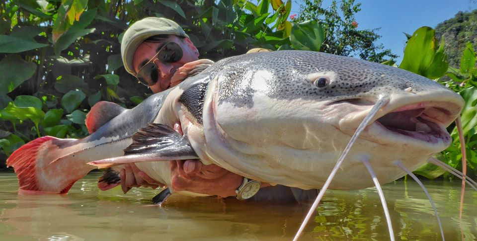 Fishing in Thailand Newsletter - October 2019 19