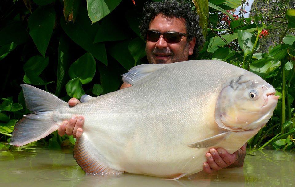 Fishing in Thailand Newsletter - October 2019 11