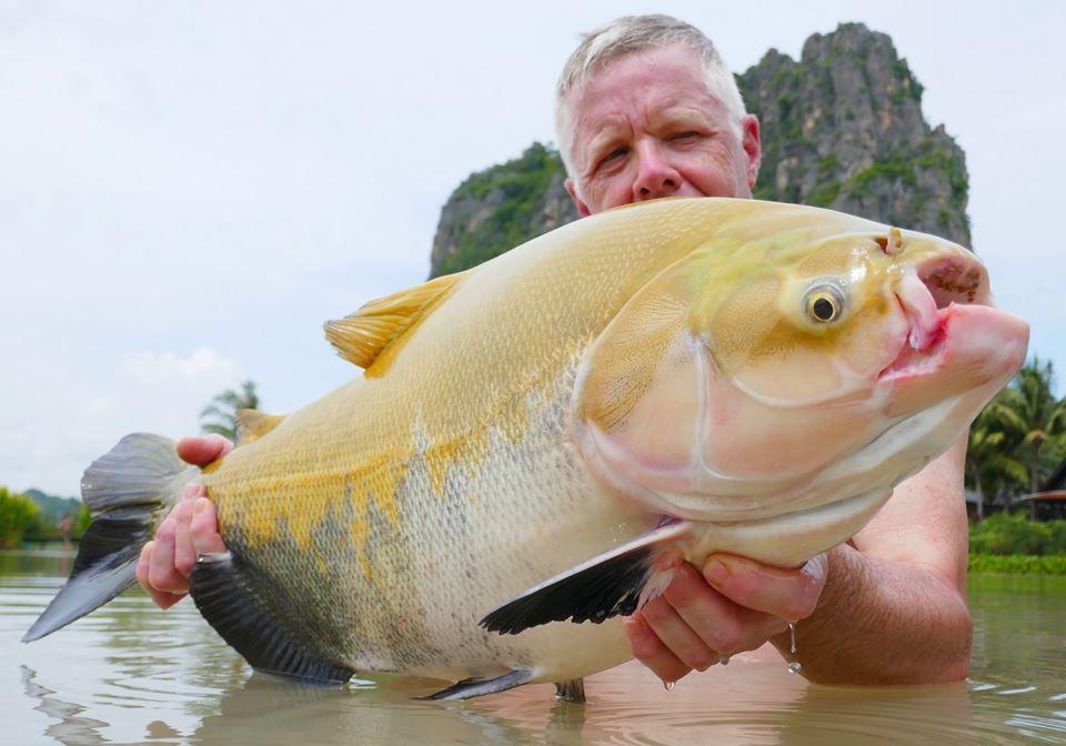 Fishing in Thailand - November 2019 2