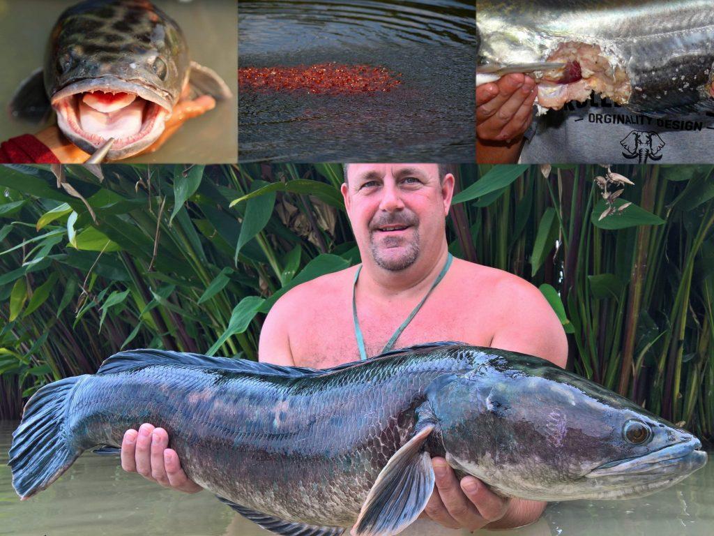 Fishing in Thailand - November 2020 21