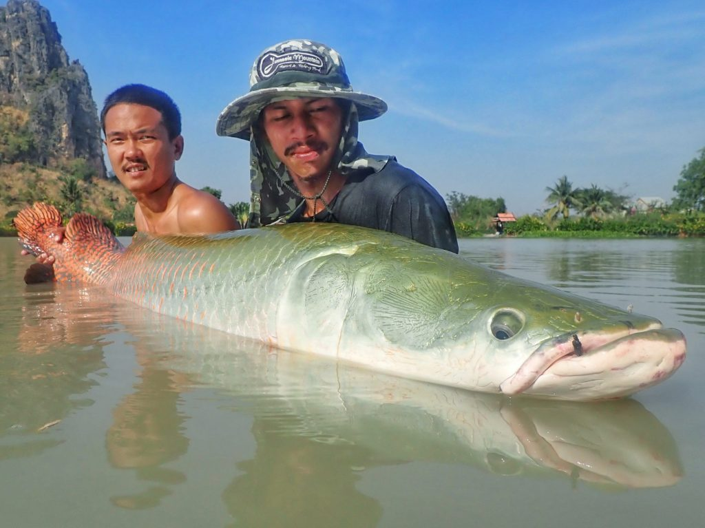Fishing in Thailand - January 2021 8