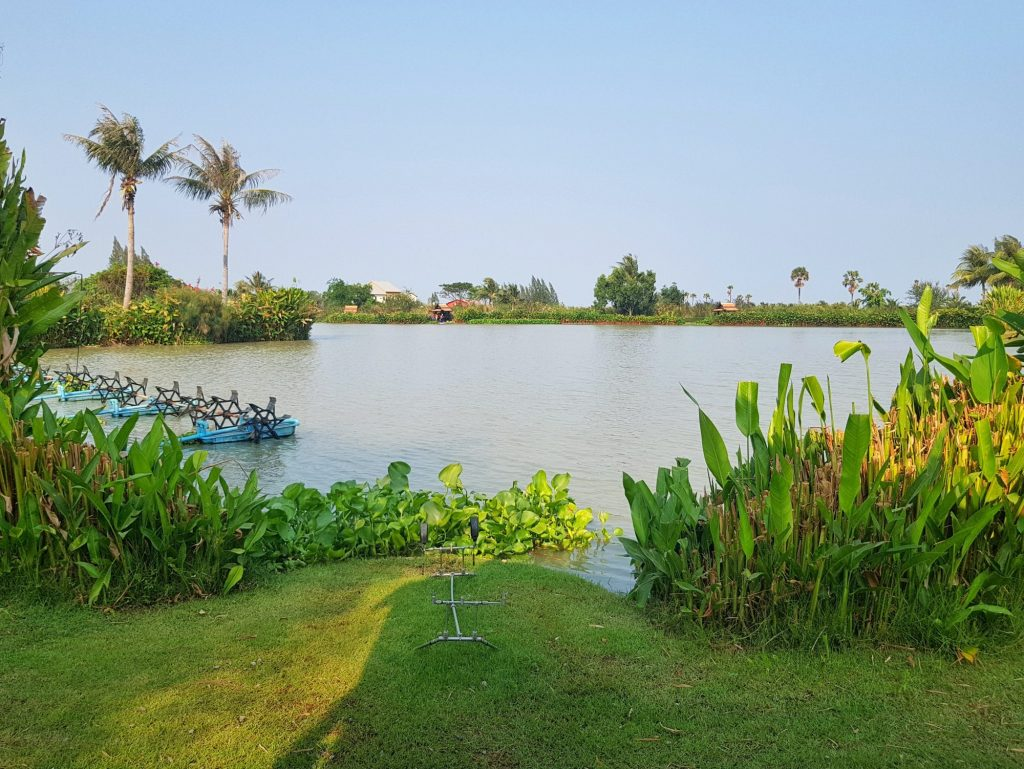 Fishing in Thailand - February 2021 22