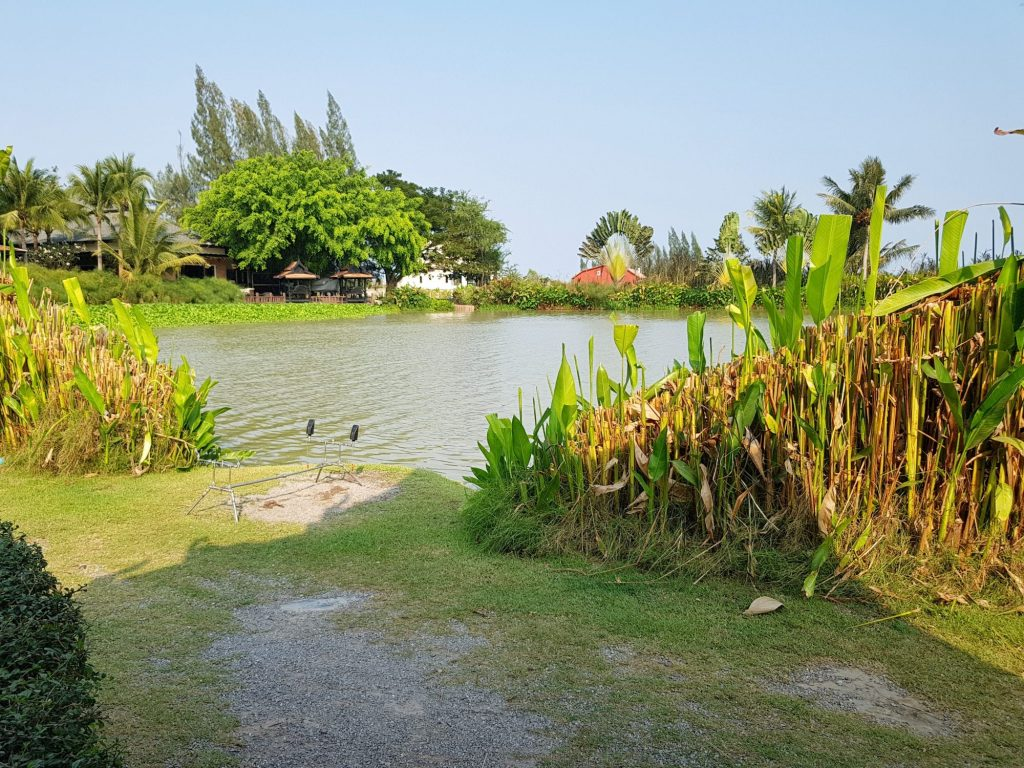 Fishing in Thailand - February 2021 25